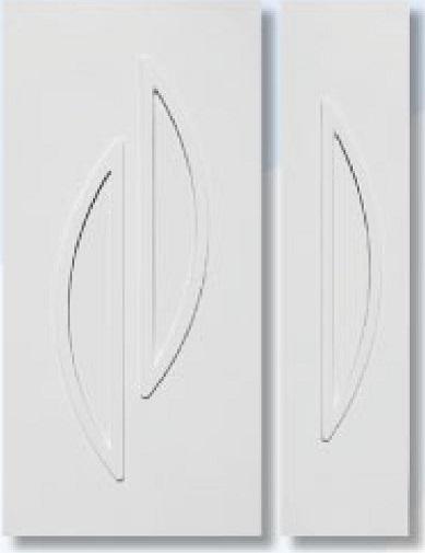 panel B100P+B101P